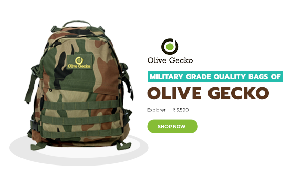 Olive Gecko Ecommerce Website design project